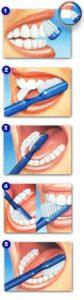 lavarte dientes pasos majadahonda